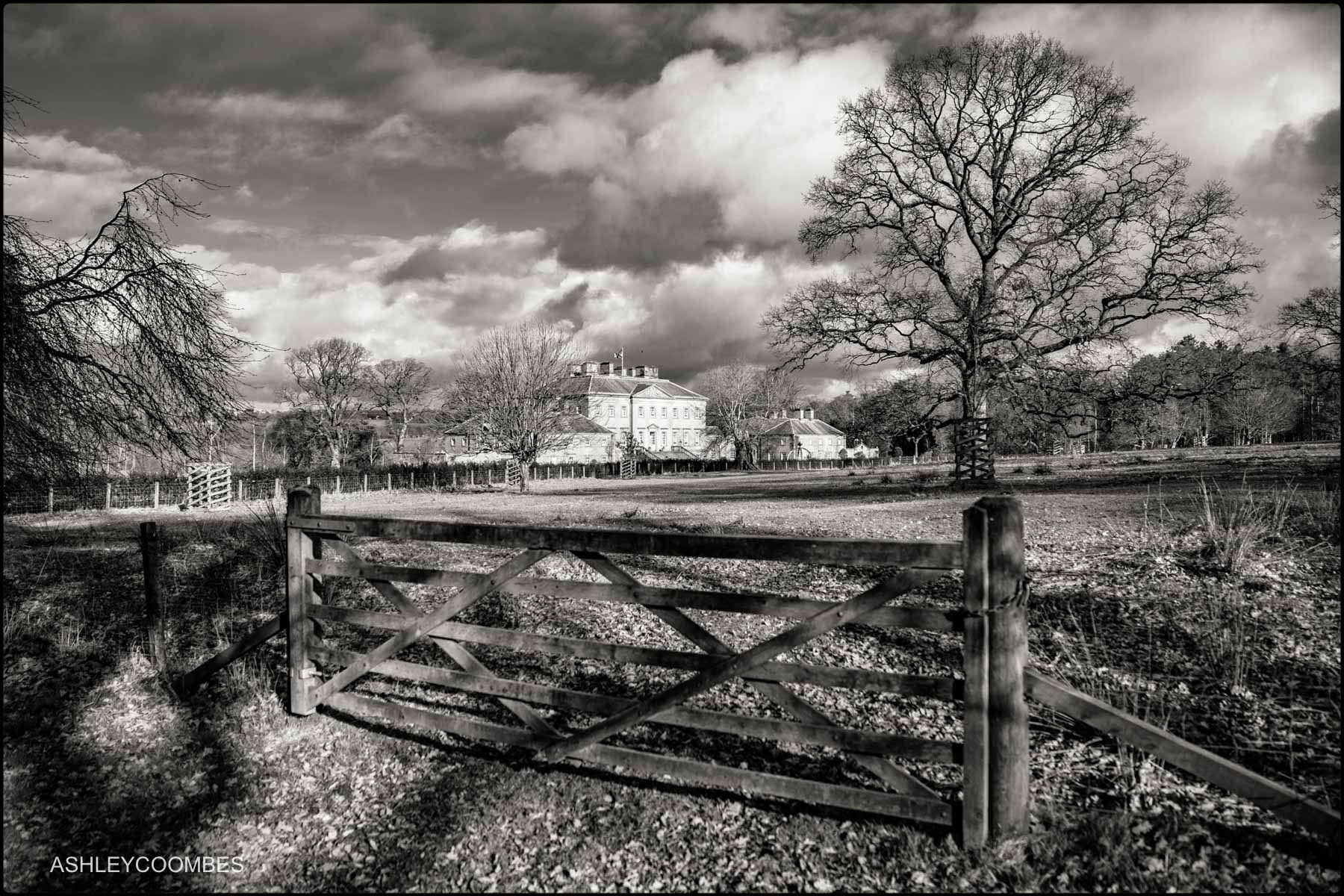 Dumfries House view from field