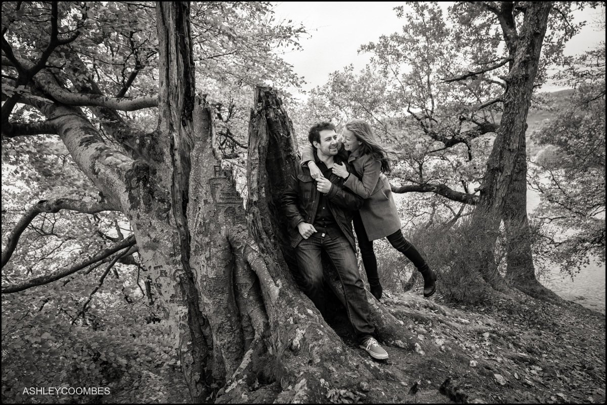 engagement shoot by old tree